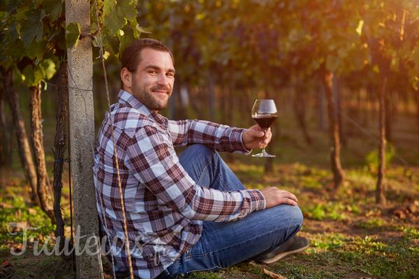 Comment organiser sa dégustation de vin pas à pas